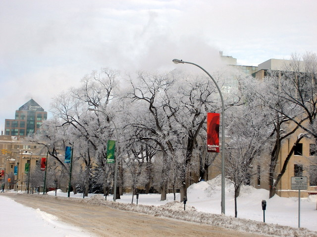 Winnipeg Winter