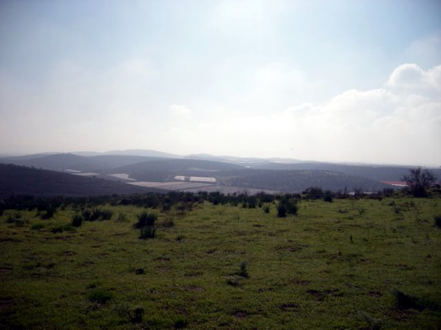 View From Lachish
