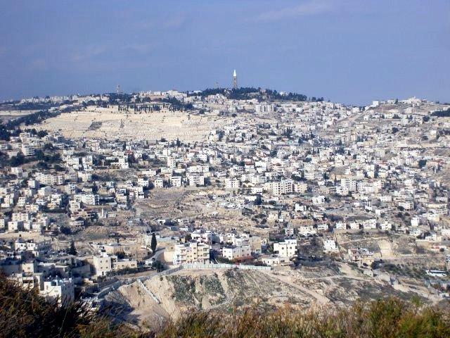 Palestinian Area