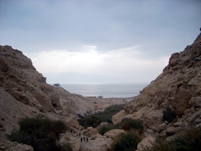 Watching the Dead Sea from Ein Gedi