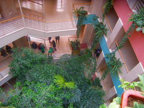Bethlehem University